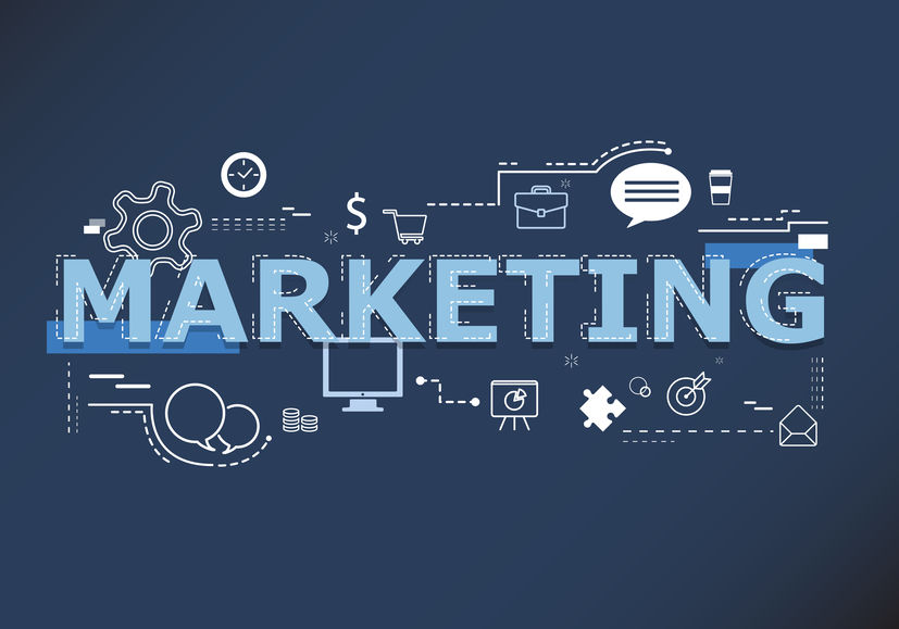 SEO marketing plans from data dames word concept